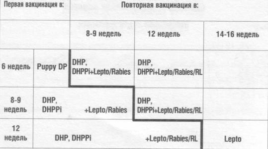 Прививки Щенков по схеме: