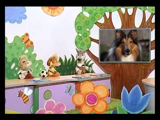 Природоведение 59. Служебные собаки — Шишкина школа