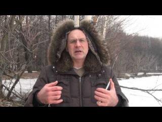 Документы для Охоты с Луком и Арбалетом в России - какие нужны документы на лук, арбалет и на охоту