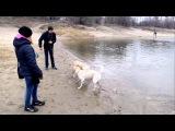 Дженни и Сэм на озере. Часть 3