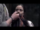 Тасманские дьяволы 2013