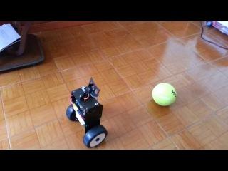 RoboRealm - Robotic Machine Vision Software