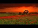 Мзыка для Спа Салонов   Музыка для Сна Гипноз от Стресса