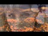 Essonita Ft Irina Makosh-Lift Me Up
