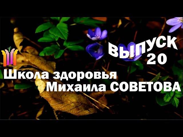 Школа здоровья Михаила СОВЕТОВА ВЫПУСК 20