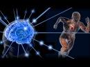 Генетика бога Скрытые резервы человеческого организма