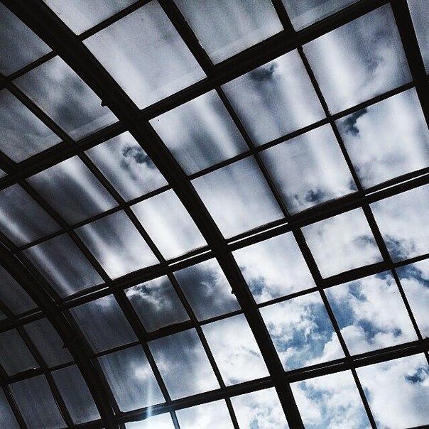 Фото галерея большых пезд 15 фотография
