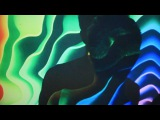 Owen Pallett - The Passions (Official Video)