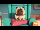 Тайная жизнь домашних животных / The Secret Life of Pets / Тизер-трейлер (Русский язык)