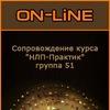 """Сопровождение курса """"НЛП-Практик"""", группа 51"""