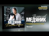 Владислав Медяник - Босяк (Audio)