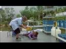 Faith No More - VideoFilm Faith No More Songs in Movies