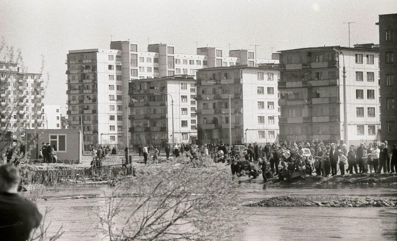 Проститутки воскресенка киев 6 фотография