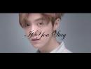 [FMV] KAILU - If You Stay / Если Ты Останешся