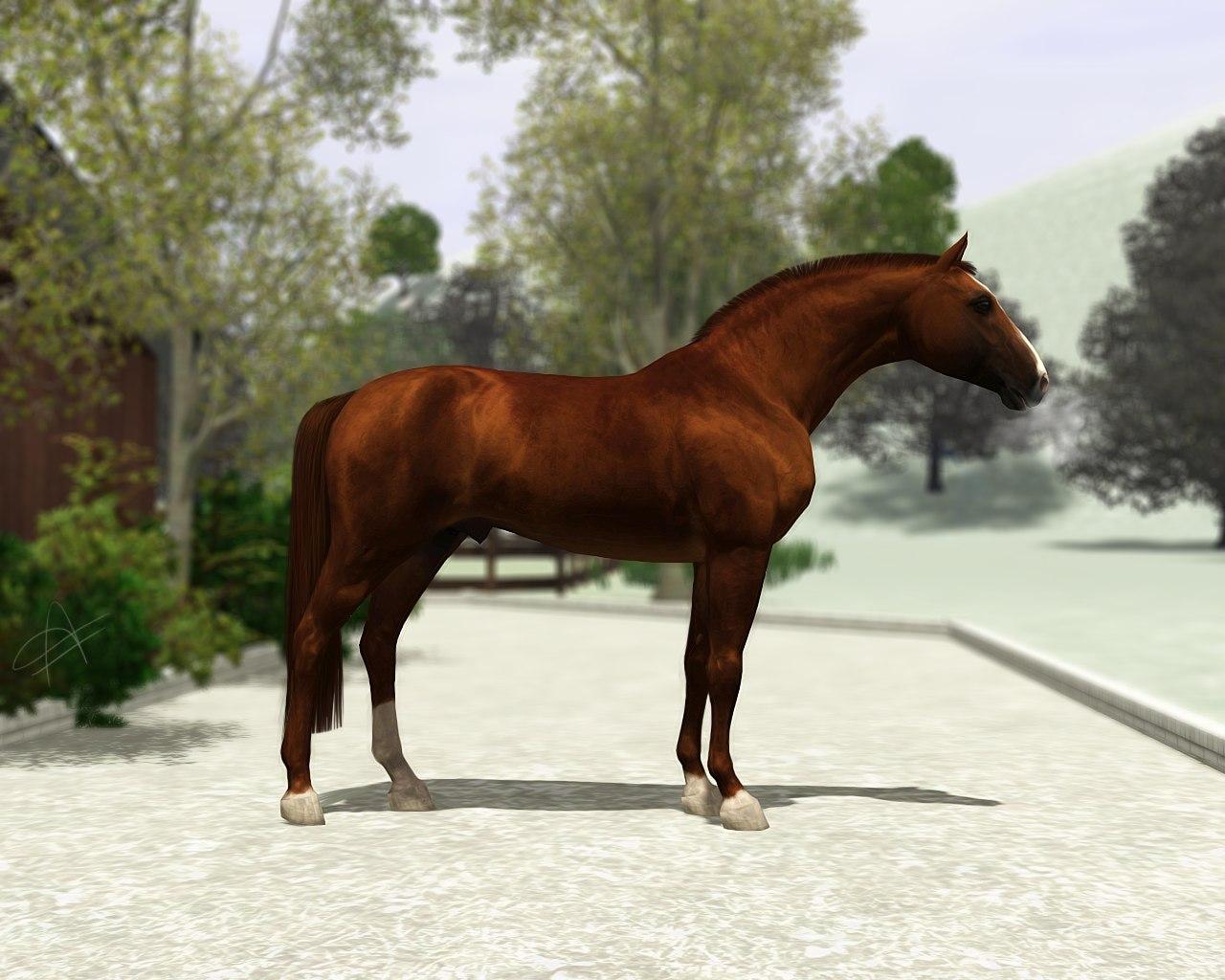 Регистрация лошадей в RHF 2 - Страница 5 AUVDqA7N87w