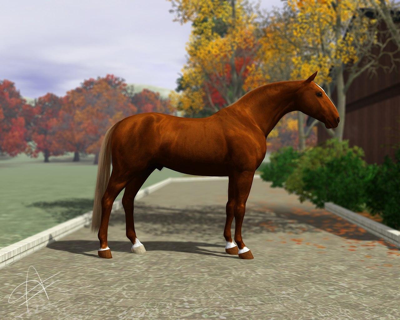 Регистрация лошадей в RHF 2 - Страница 5 FkAaUjljXKQ