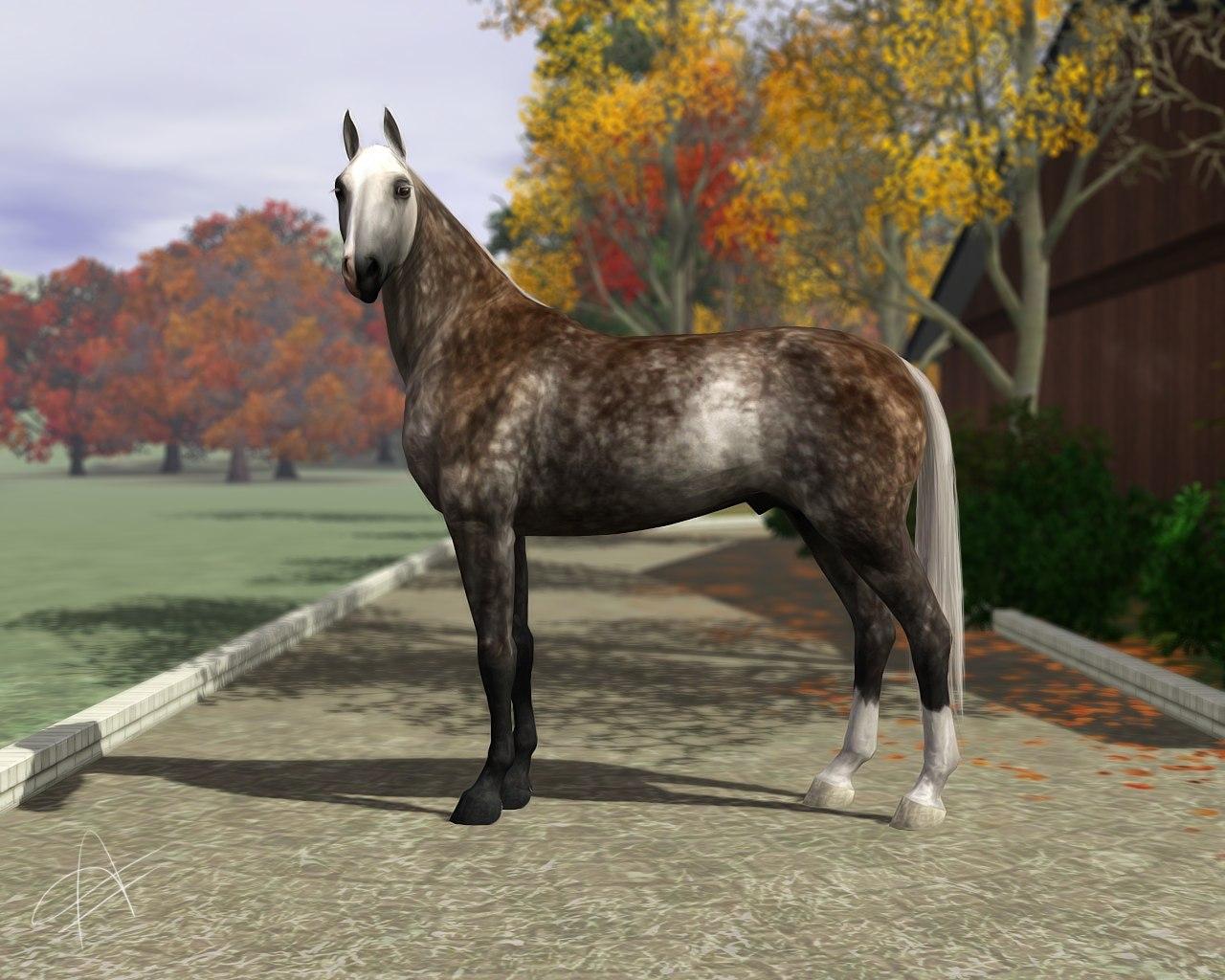 Регистрация лошадей в RHF 2 - Страница 5 VNnDIRV4aW8