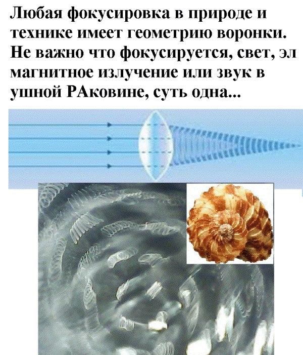 6. Процесс образования спутников и планет XvE-g8WtPNg