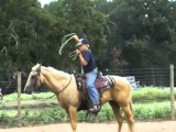 De La Cruz High Quality Rope Horses and Kid Broke Gentle Ponies Music by EdBruceMusic.com