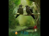 EMERALD FOREST LENORMAND DECK