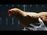 Dancing chicken commercial by Mercedes-Benz