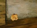 Мышонок Пик (1978) супер мультфильм______________________Астерикс 2014, Приключения Кота в сапогах 1,2 сезон, Махни крылом 2014