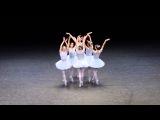 Веселые приколы!!! Самый смешной балет из тех что я видел