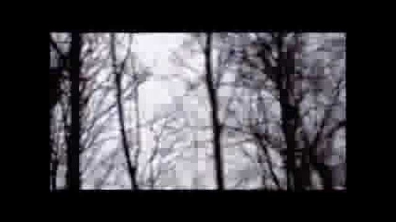 Volbeat The Garden's Tale Official Video
