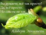 мантра, аффирмации, внушение, гипоталамус, невротик консультация психолога Левченко