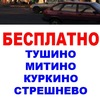 Бесплатное Митино Тушино Стрешнево Куркино