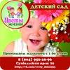 Детский сад ЦВЕТЫ ЖИЗНИ во Владимире