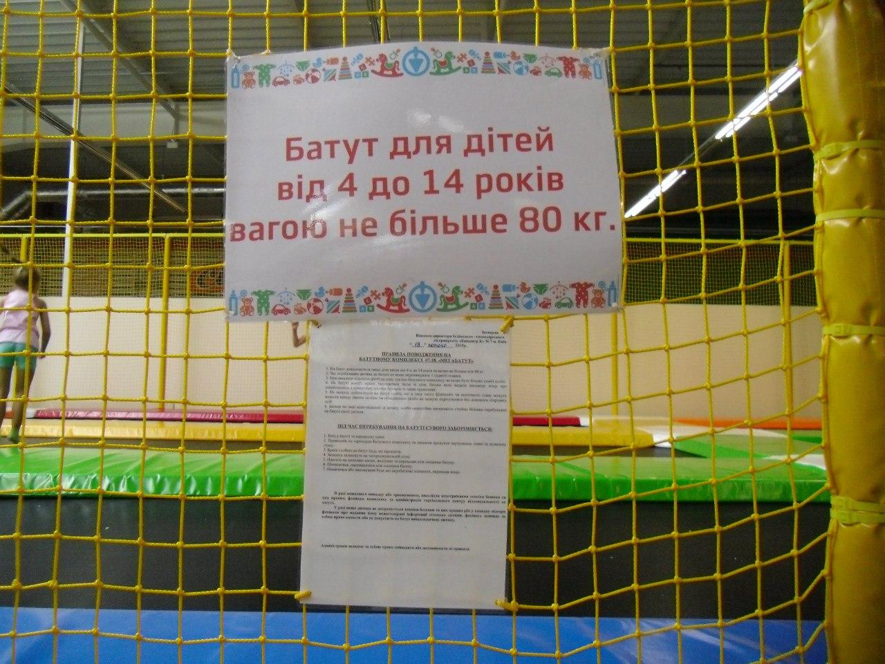 батут2