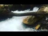 erika_andreevna_ video
