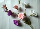 DIY craft tutorial How to make paper flower Lisianthus Làm hoa cát tường bằng giấy nhún