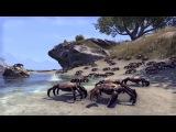 The Elder Scrolls Online — трейлер