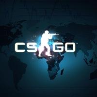 скачать Gs Go игру img-1