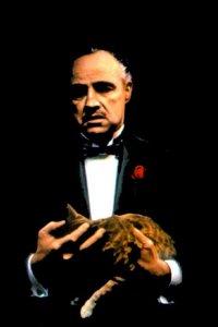Don Corleone, 26 сентября 1978, Самара, id39104386