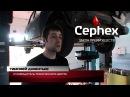 Цефекс в программе «День» телеканала Первый Мытищинский