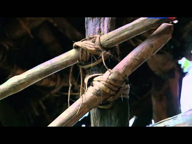 Затерянные миры Посланники джунглей Папуа Новая Гвинея