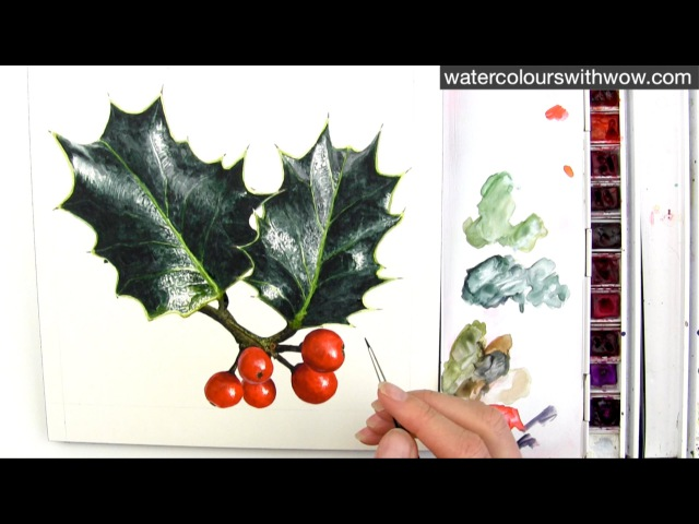How to paint realistic holly leaves for your Christmas card in watercolour by Anna Mason