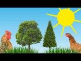 Животные с голосами.Как говорят животные. Развивающий мультфильм для детей от 1 года. HD .