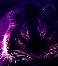 фото на аву тигра
