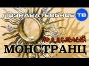 Христианская подделка Распятый Иисус Христос на символе солнца Познавательное ТВ Артём Войтенков