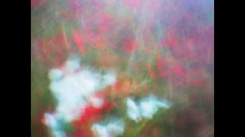 Minus Treli - When Summer Ends