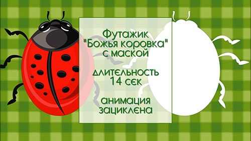 Видео-футаж HD - Ladybug