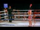 Прекрасный Боксер. Beautiful Bokser .Koh Chang Asia - Ко Чанг Азия Ваш Тропический Рай
