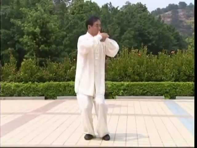 Ян Тайцзи цюань Фу ней пай Лао Цзя 108 форма.