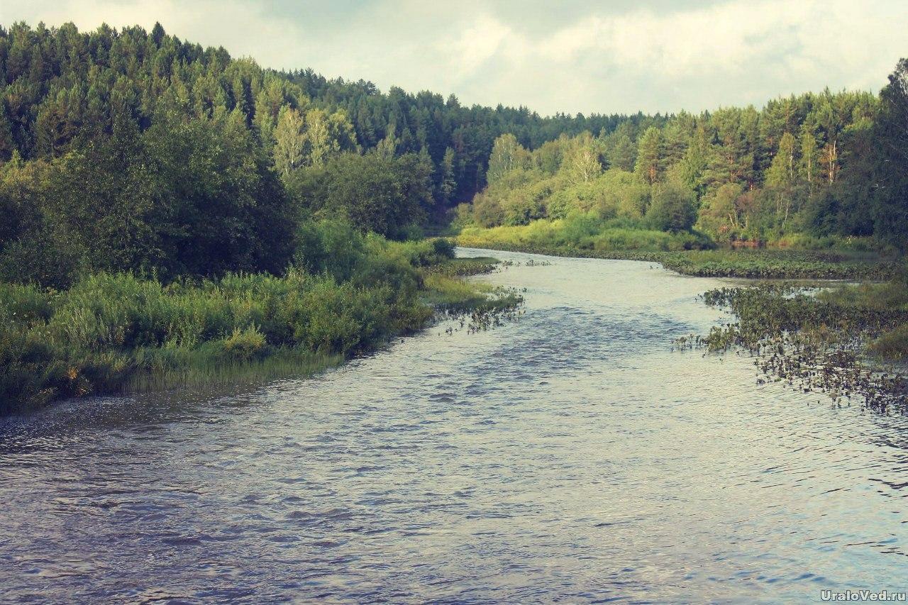 Река Бардым
