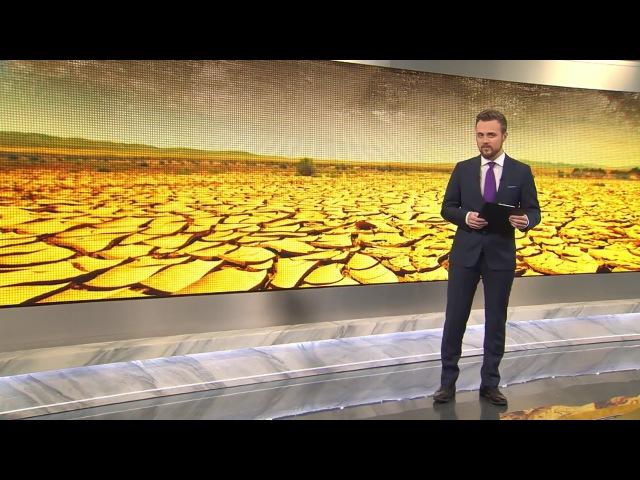 Всемирная засуха причиной войн будущего станет вода