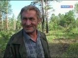 Темный лес, лесное богатство России, в чьих руках? Специальный корреспондент